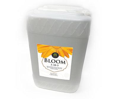 Age Old Bloom 6 gal