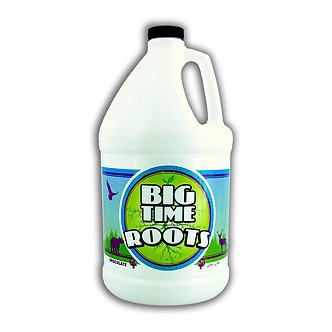 Big Time Roots Gal (4/cs)