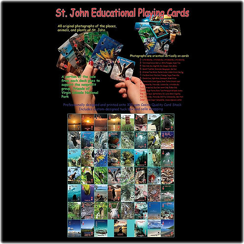Educational Playing Cards - Vertical Orientation