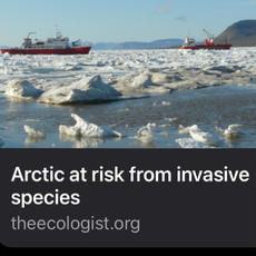Invasive Species and a Loss of Endemic Species