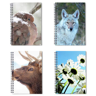 Spiral Notebooks, Fine Art America