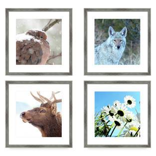 Framed Art Prints, Fine Art America