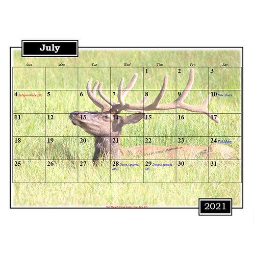 2021 Colorado and Wyoming Wildlife Calendar