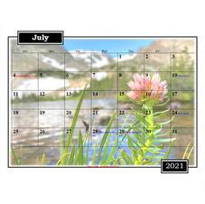 2021 Plant Calendar