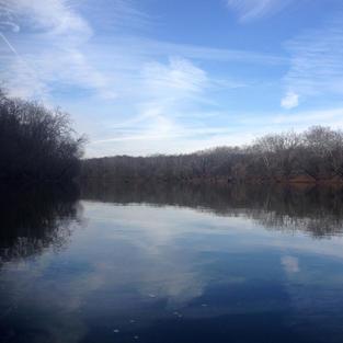 Large River Freshwater Ecoregions