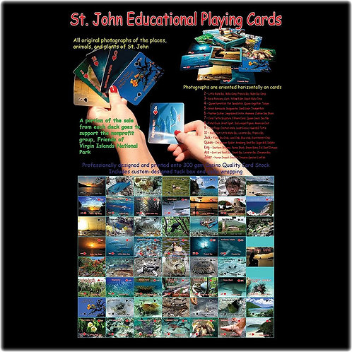 Educational Playing Cards - Horizontal Orientation