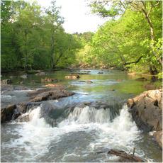 Landscape, North Carolina collection