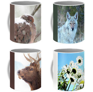 Coffee Mugs, Fine Art America