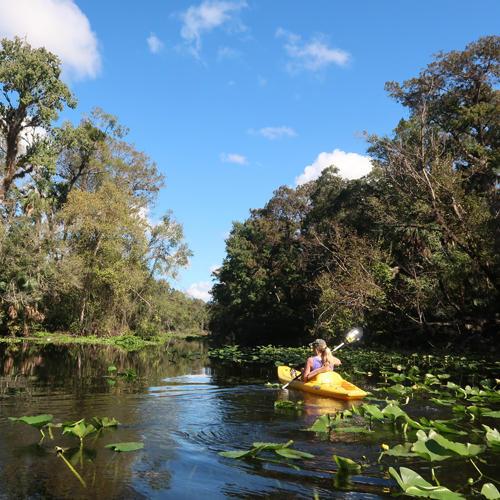 Small River Freshwater Ecoregions