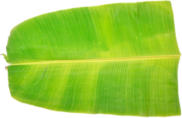 Banana leaf meals