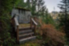 cabin, home