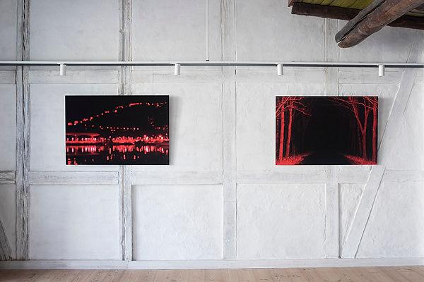 Henriette Dan Bonde - COBRArummet instal