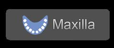 maxilla button