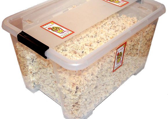 Special School Tub of Pink Himalayan Salted Popcorn