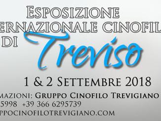 2^ Esposizione Internazionale Cinofila di Treviso - Raduno Bouledogue Francesi
