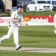 Thommo has valuable wicket of Haines_61Z