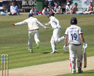 _61Z8526 Virdi take soff after wicket of Pujara .jpg