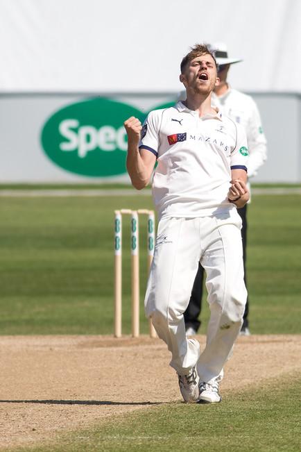 8 Delight at Harmer's wicket for Ben_61Z0599.jpg