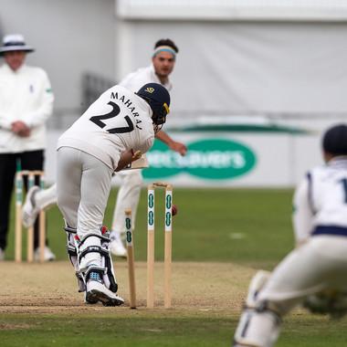 Brooks wicket 13-9-2018_61Z1634.jpg