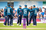 Rashid wicket celebration_61Z9271.jpg