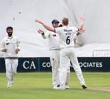 Waite celebrates wicket of Gregory lbw