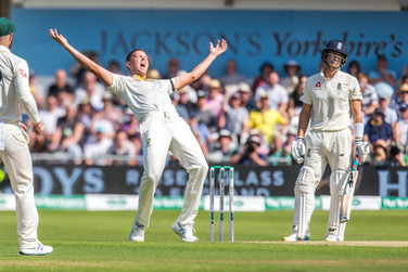 Hazlewood appeal (Turned down on review)