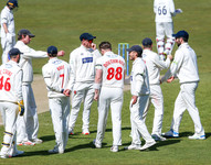 Douthwaite sends Joe Root on his way, c