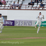 Wickets are coming. Hodd catches Craig Overton off Sidebottom