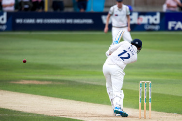 Patel wicket_61Z0082.jpg