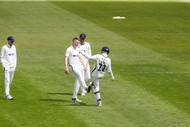 12Harry celebrates wkt of Billy Root c a
