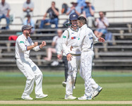 celebration of Stoneman's wicket_61Z7620