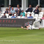 Patto  brilliantly saves a boundary. Vital at this stage .