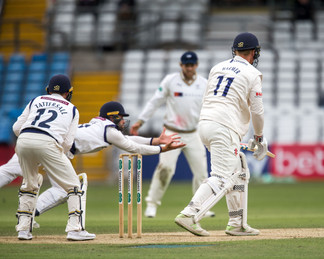 Fraine catch but  not out_61Z7231.jpg