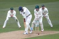 DO_61Z4266 Our new number 11 batsman.jpg