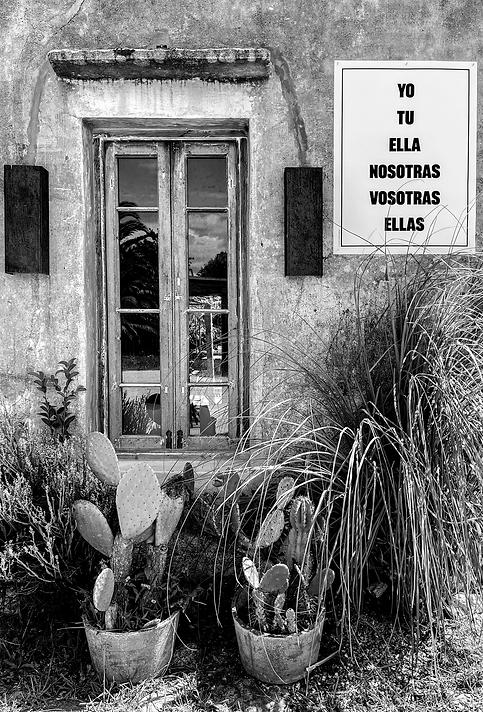 ELLAS español-4.png