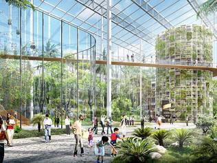 Shanghai va construire la plus grande ferme verticale du monde