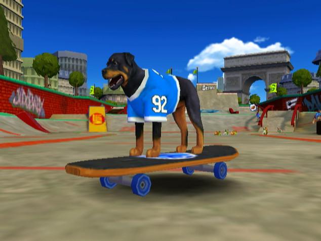 DogFootball_008.jpg