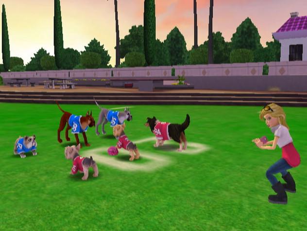 DogFootball_006.jpg