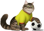 Cat Soccer.png