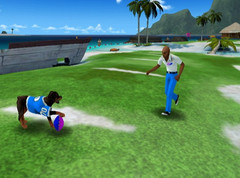 DogFootball_007.jpg