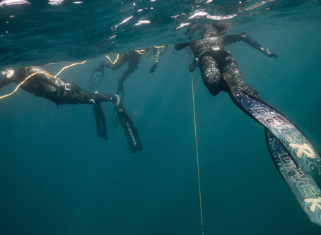Freediving The Canberra Wreck