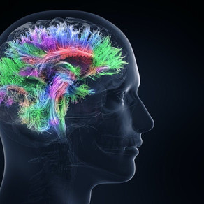 Effects of Oxygen Concentration on Cognitive Ability