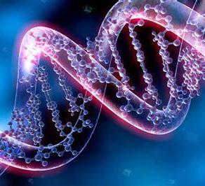 Using Genetics to Understand Autism