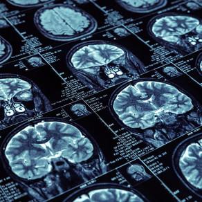 The Future of Neuroscience: Memory Retrieval
