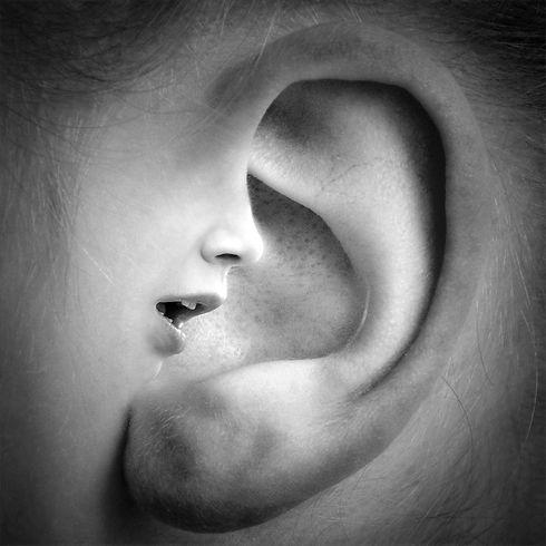 ear-3971050_1920_edited.jpg
