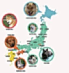 kaart met honden.jpg