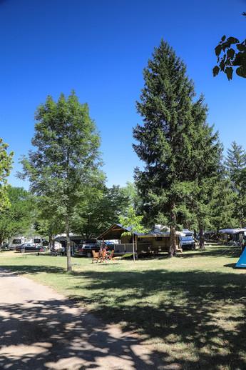 La tente Echirou à l'ombre des sapins l'après-midi