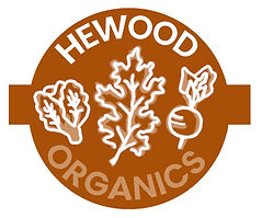 NEW LOGO HEWOOD TURNIP 2.jpg