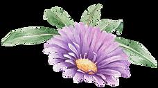 Flor roxa com folhas