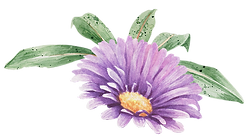Purple Flower with Leaves